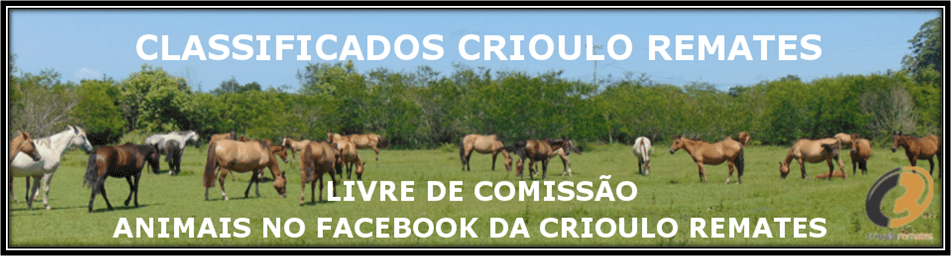 Banner Classificados Crioulo Remates Facebook